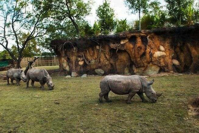 حديقة الحيوان في بورصه
