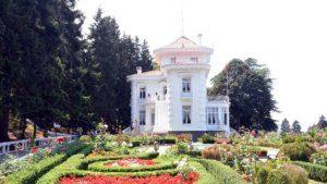 فنادق قريبة من قصر اتاتورك طرابزون